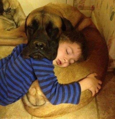 Barn använder hund som kudde - och tvärtom