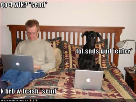 Nu kan jag tänka mig att skaffa en hund